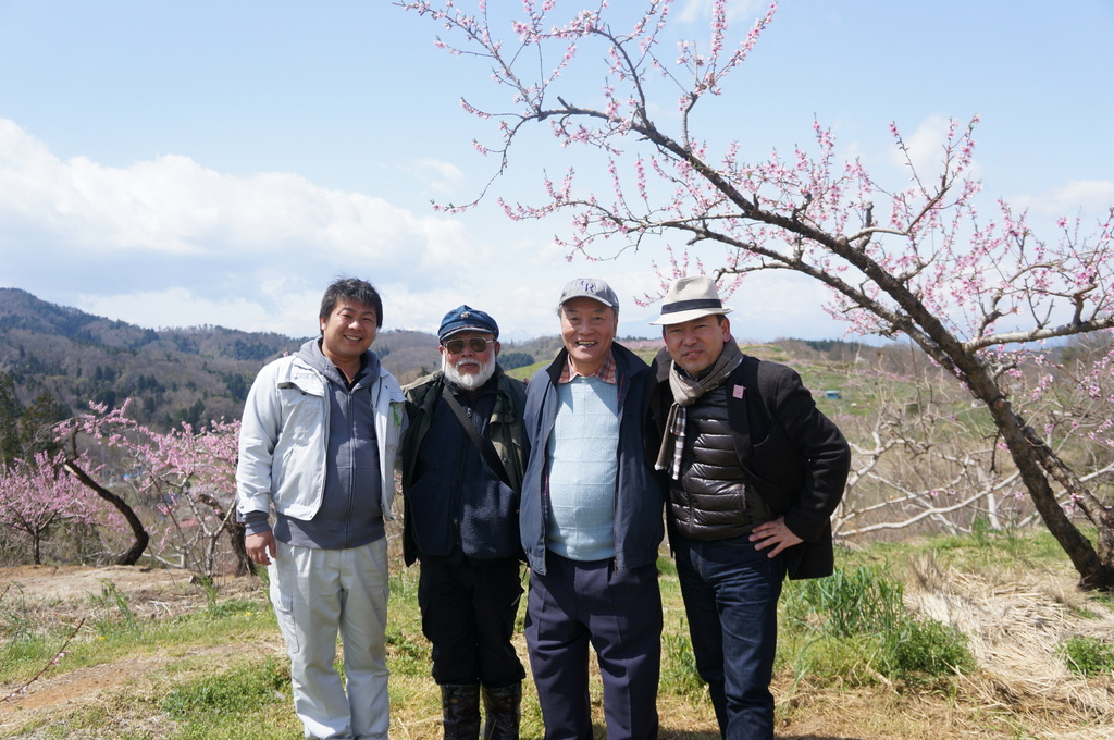 福島日記@ベルリンVol.3 桃の花とお好み焼き!_c0180686_22112100.jpg