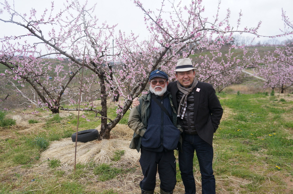 福島日記@ベルリンVol.3 桃の花とお好み焼き!_c0180686_22115887.jpg