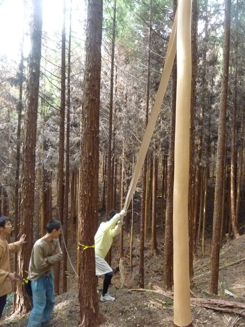 6月8日(日)「きらめ樹実習会フィナーレ&森ヨガ」のお知らせ_e0263590_1443171.jpg