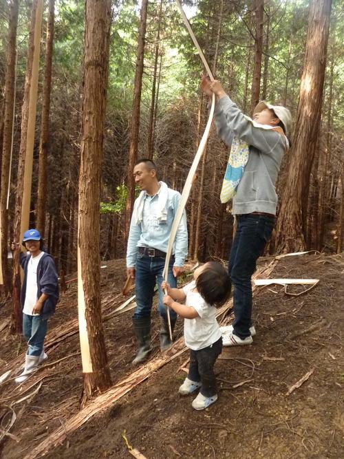 6月8日(日)「きらめ樹実習会フィナーレ&森ヨガ」のお知らせ_e0263590_1463841.jpg