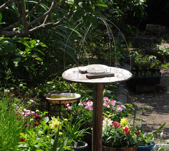 スズメの餌台、ネズミ&カラス対策2013(追記あり♪)_a0136293_1242518.jpg