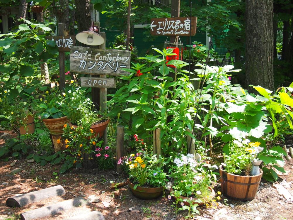 """「2013中札内花フェスタ」""""カンタベリーの庭""""造っています。(1)_f0276498_19534423.jpg"""