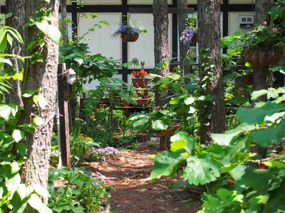 """「2013中札内花フェスタ」""""カンタベリーの庭""""造っています。(1)_f0276498_19562432.jpg"""