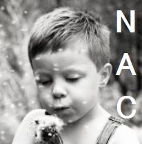 メタアナリシス:COPDに対する高用量NACは急性増悪を抑制_e0156318_1019146.jpg