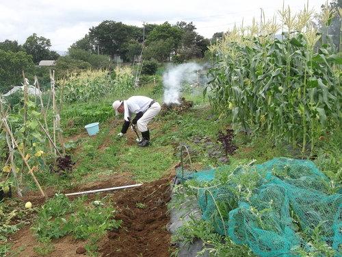 野菜畑のクリーンアップ....疲れました。_b0137932_165164.jpg