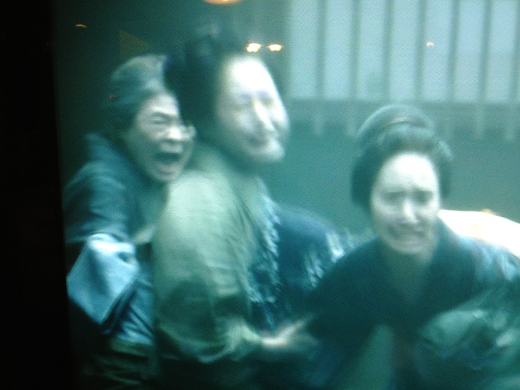 ゲゲゲの叔母にあたる大方斐紗子さんが『八重の桜』に出ました。_d0161933_23523983.jpg