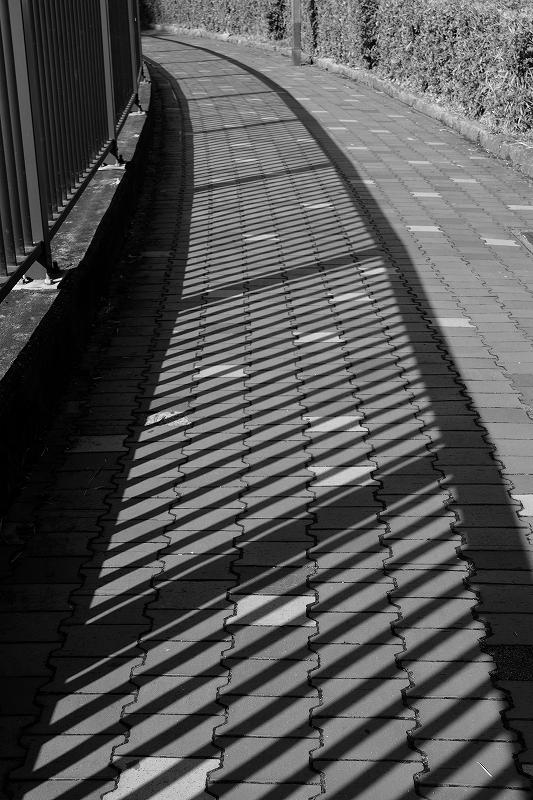 都電荒川線界隈 by  FUJIFILM X-M1_f0050534_846983.jpg