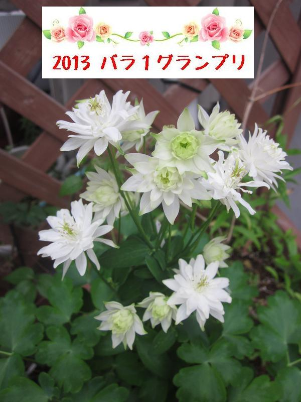 c0234938_1323853.jpg