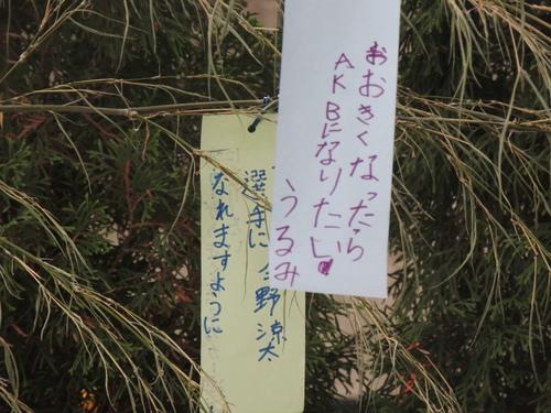 七夕飾り_e0094102_10142223.jpg