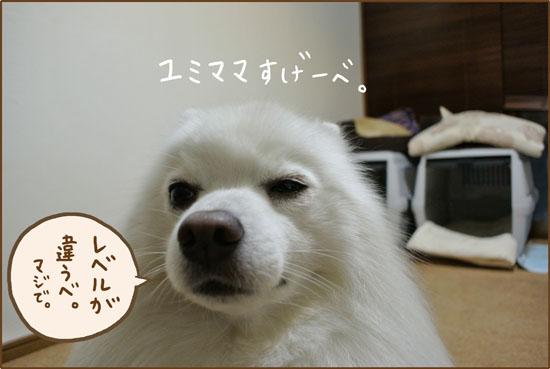 d0212419_20028.jpg