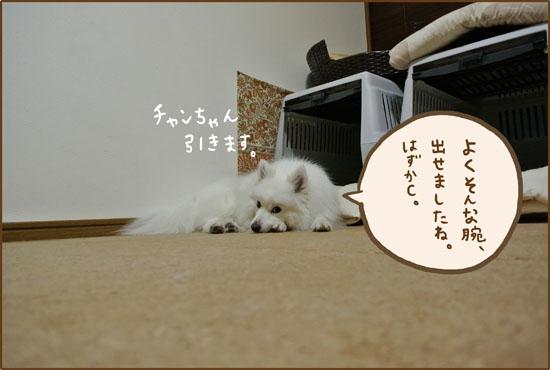 d0212419_200663.jpg