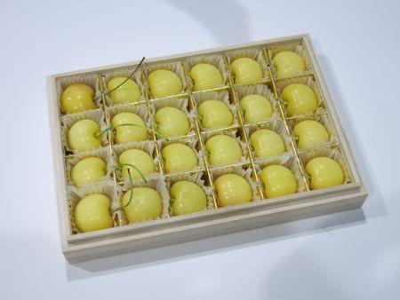黄色いサクランボ_c0108595_17423761.jpg