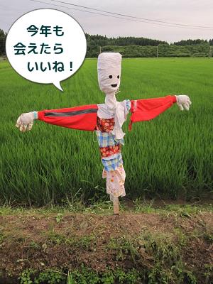 【お知らせ】ほたる鑑賞会_a0265401_5325313.png