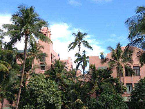 ハワイ♪ Island Vintage Coffee_e0154202_17194678.jpg