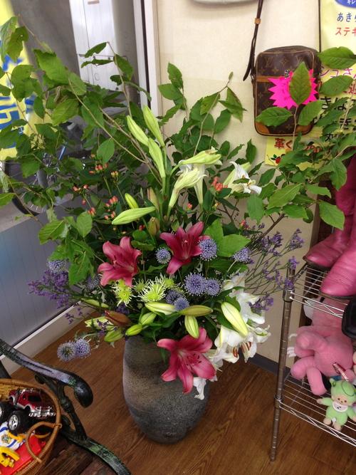 今週のお花とセール情報_a0200423_2572589.jpg