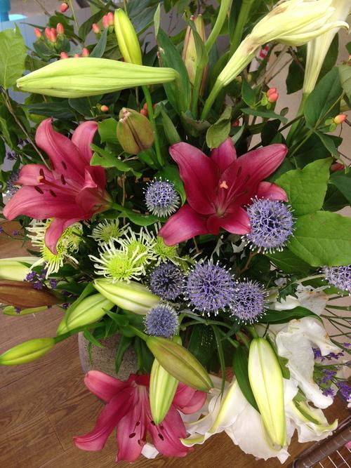 今週のお花とセール情報_a0200423_2574497.jpg