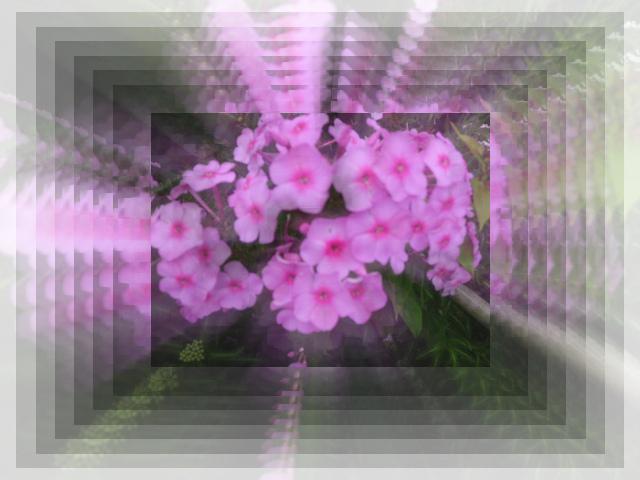 f0031546_23135347.jpg