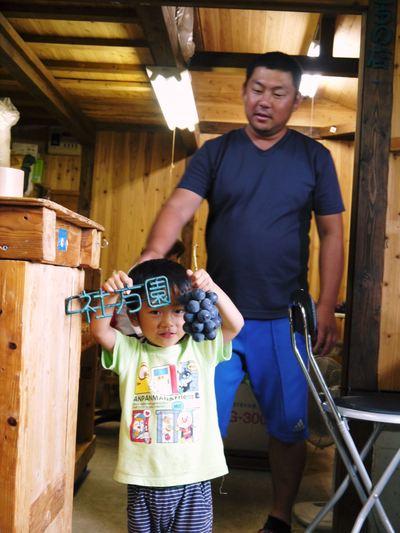 熊本ぶどう 社方園 平成25年度、豪華ラインナップでまもなく初出荷!!_a0254656_1713524.jpg