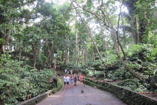 Bali-11._c0153966_174826.jpg