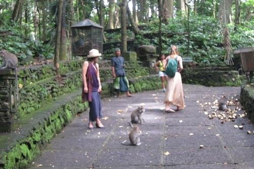 Bali-11._c0153966_1748284.jpg