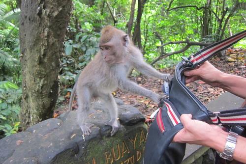 Bali-11._c0153966_17544415.jpg