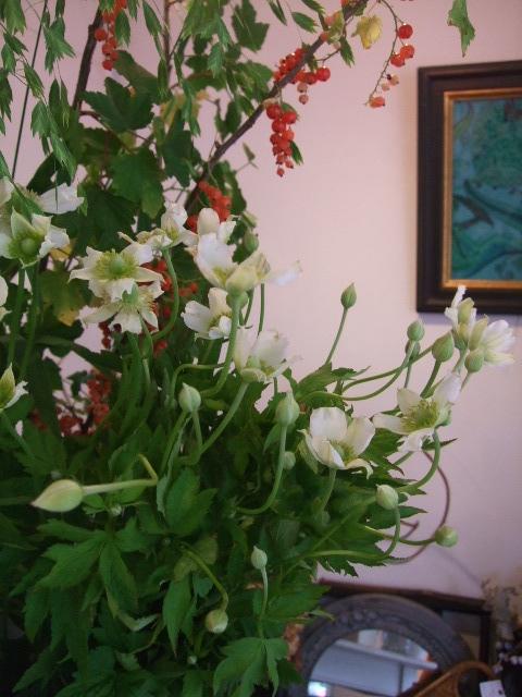オークリーフ(バラと野苺のある風景)_f0049672_16511436.jpg