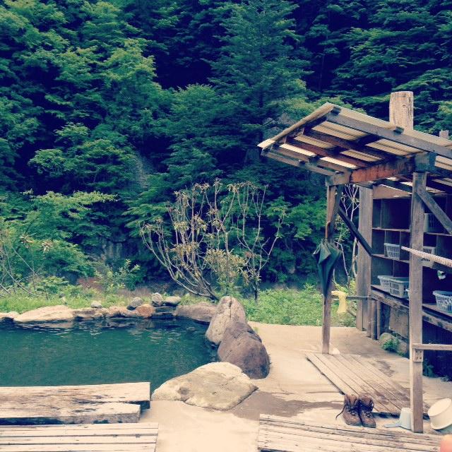湖と鳥。_d0028589_17492077.jpg