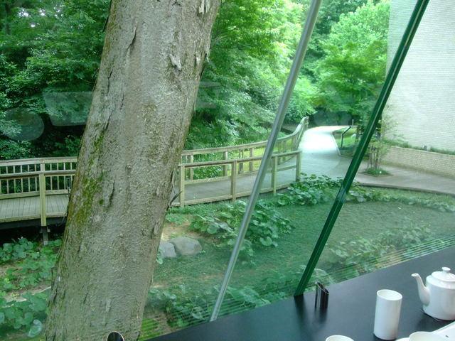第1話 金沢はまず近江町市場で食し、石川県立美術館のカフェでのんびり_f0100593_16493166.jpg