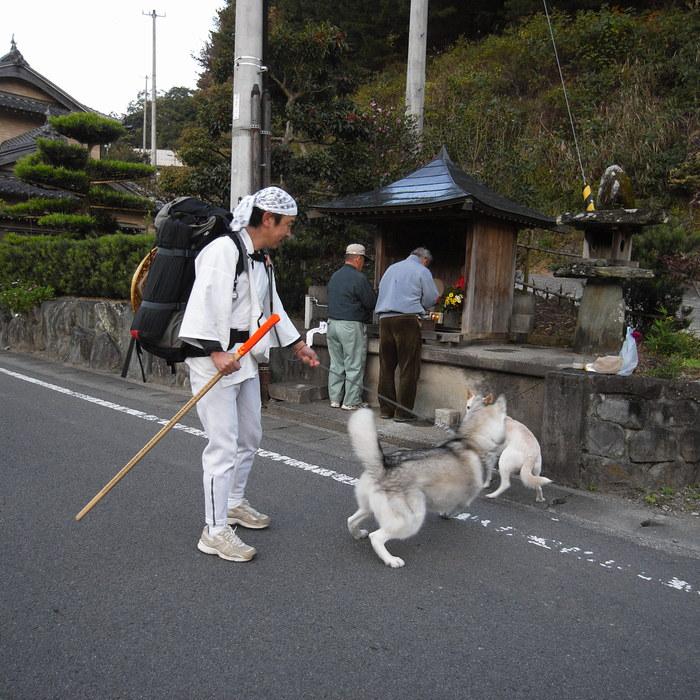 Memory of the second pilgrimage with husky HANA_c0049299_12445210.jpg