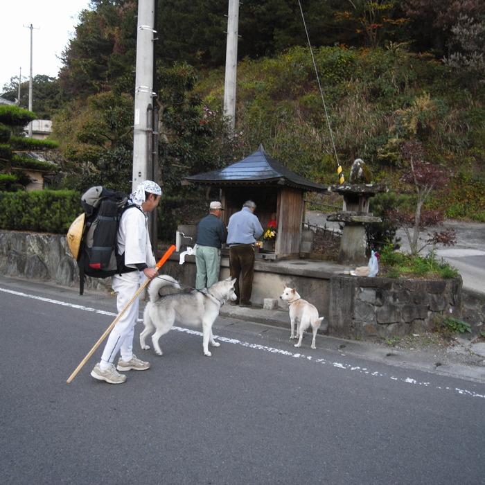 Memory of the second pilgrimage with husky HANA_c0049299_12445742.jpg
