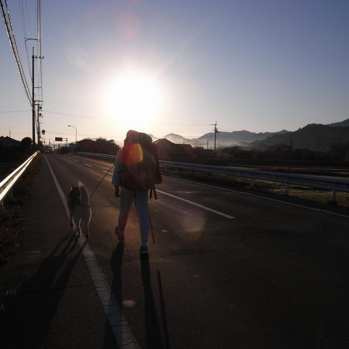 Memory of the second pilgrimage with husky HANA_c0049299_12505798.jpg