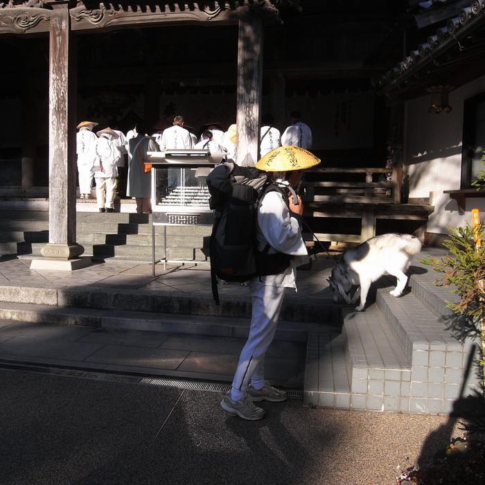 Memory of the second pilgrimage with husky HANA_c0049299_1258583.jpg
