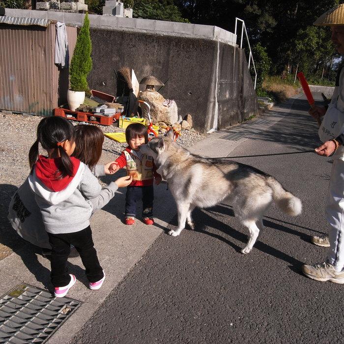 Memory of the second pilgrimage with husky HANA_c0049299_13102079.jpg