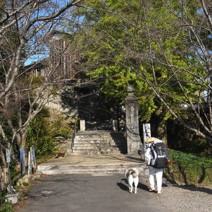 Memory of the second pilgrimage with husky HANA_c0049299_13105582.jpg
