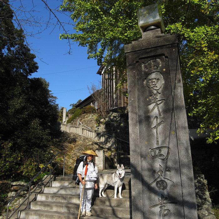 Memory of the second pilgrimage with husky HANA_c0049299_13111656.jpg