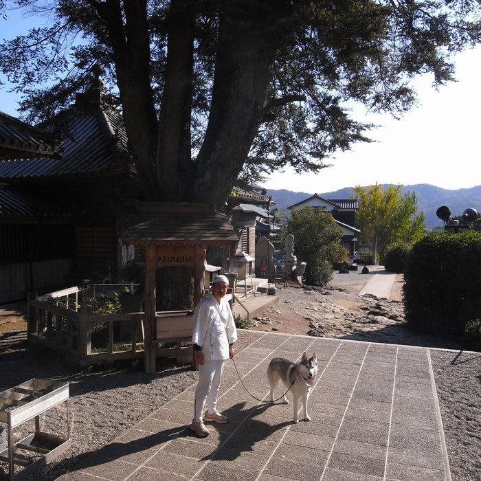 Memory of the second pilgrimage with husky HANA_c0049299_13142921.jpg
