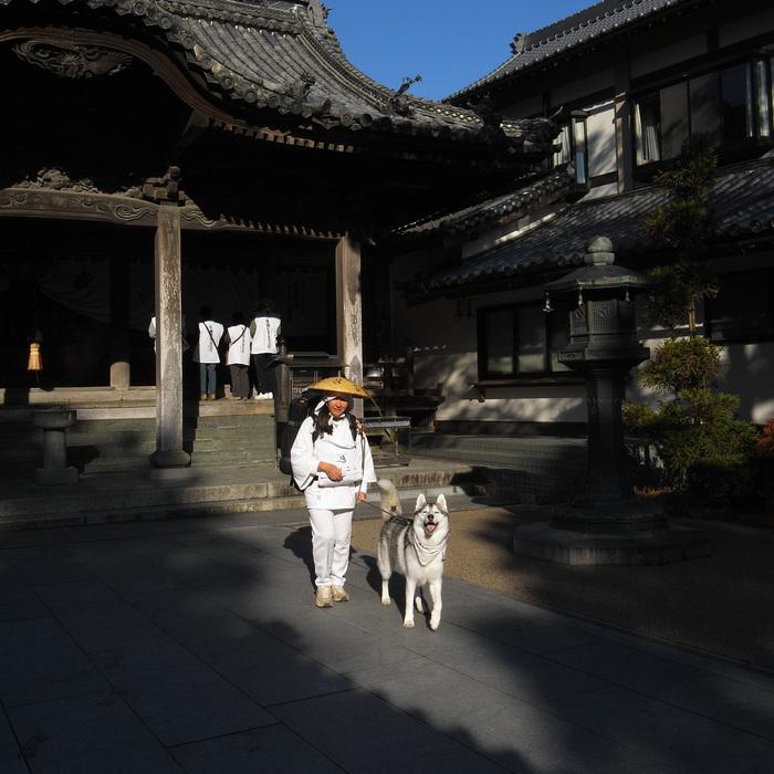 Memory of the second pilgrimage with husky HANA_c0049299_1324055.jpg