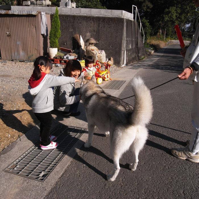 Memory of the second pilgrimage with husky HANA_c0049299_1395642.jpg