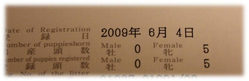 b0245048_5101562.jpg