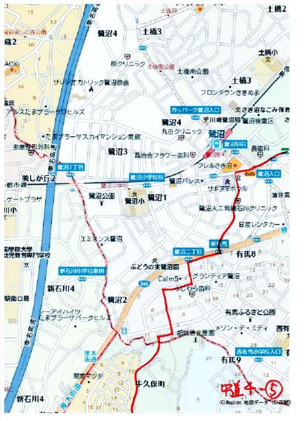 「健街道」鎌倉街道中道ウォーク4回目活動報告_a0215849_6503553.jpg