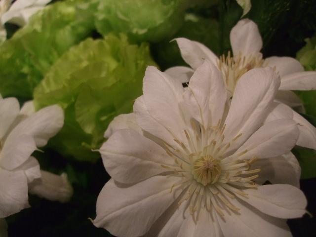 オークリーフ(季節の花束)_f0049672_11425988.jpg