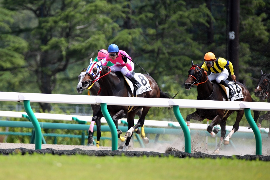 2013年7月6日 茶臼山高原特別_f0204898_22223479.jpg