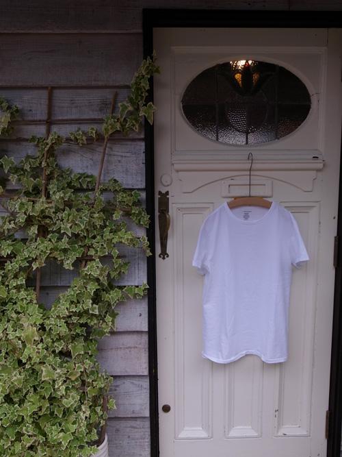 なんかいいシンプルなTシャツ_a0113127_8494632.jpg