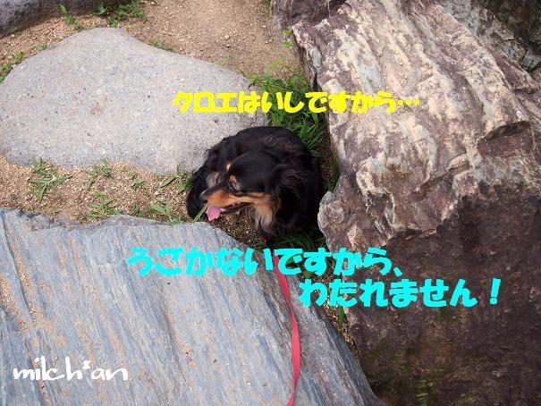 b0115642_1894633.jpg