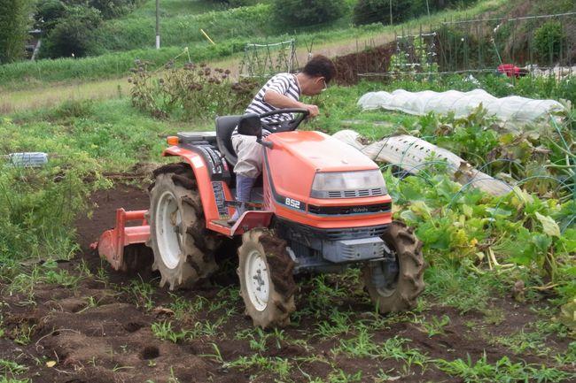 雑草抜きと土が絞まるのを防ぐため・・・・_c0222448_13314138.jpg