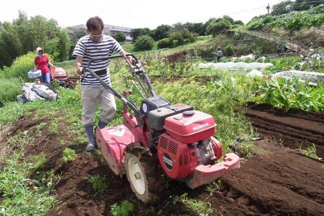 雑草抜きと土が絞まるのを防ぐため・・・・_c0222448_13315672.jpg