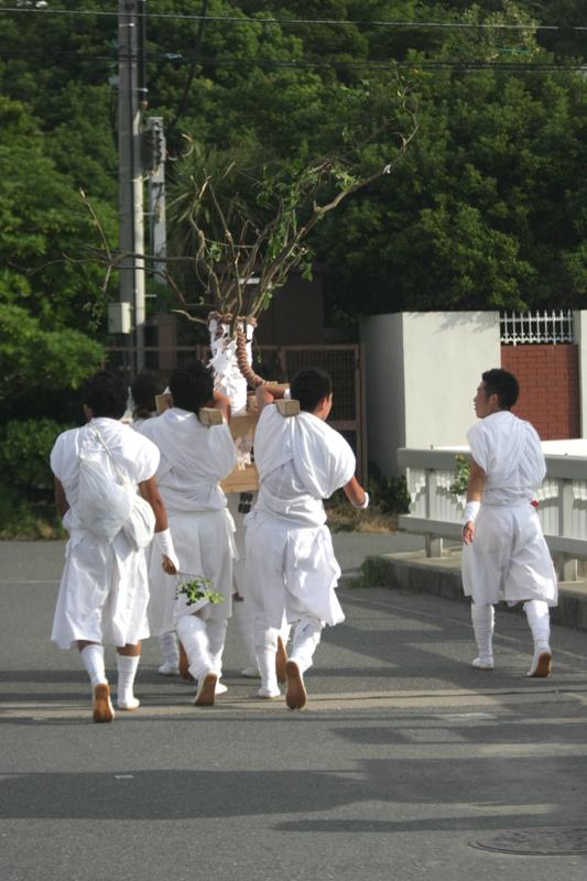 秋谷神明社御祭禮 2013 榊-2_f0156448_19291274.jpg