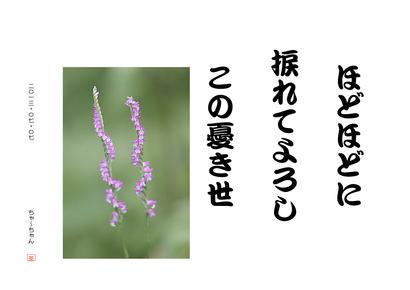 b0142158_16373058.jpg