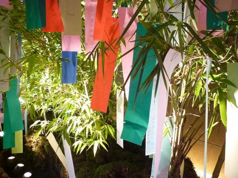 笹のは さらさら。。。ホテルオークラ東京の七夕様と 我が家で 優しいお茶の時間です♪。*。:☆.† _a0053662_2342598.jpg