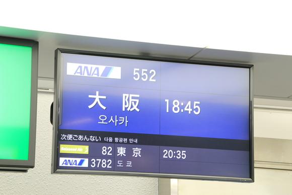 鹿児島帰郷  大阪への帰路 ANA_d0202264_656462.jpg